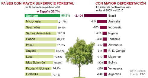 países mayor superficie forestal contra paises con mayor deforestacion