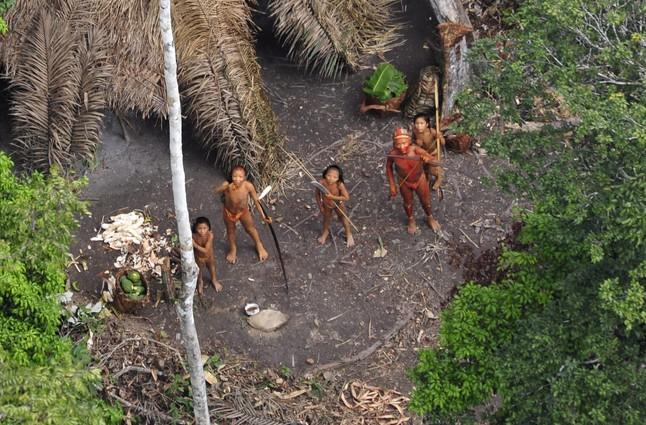 Descubren en Brasil una tribu indígena que ha permanecido aislada siempre de la civilización. (Video)